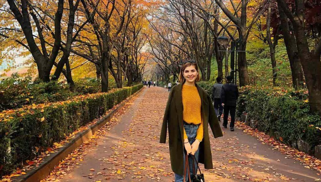 South Korea Holiday Tips and aides 2019 complete!